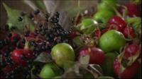 Freshly picked wild fruit