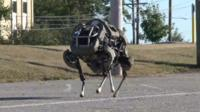 The Wildcat robot by Boston Dynamics