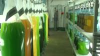 Algae in the laboratory