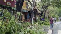 A man walks past fallen tree branches after typhoon Haiyan hit Sanya, Hainan province