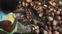 Man cutting coconuts