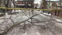 A fallen branch on an icy road