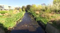 Lewisham river