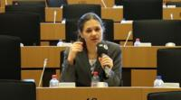 MEP Amelia Andersdotter in the European Parliament