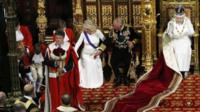 The Duchess of Cornwall and Prince Charles reach towards the pageboy who fainted during the Queen's Speech