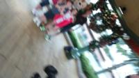 Jayne Boorman's holiday photograph