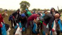 Litter-pickers