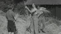 Land Girls working in a field