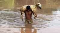A Pakistani man carries a sheep on his back as he wades through floodwater at a village on the outskirts of Multa