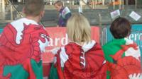 Welsh flags