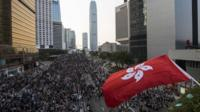 A protester waves a Hong Kong flag during a rally as they block the main road to the financial Central district in Hong Kong September 29, 2014