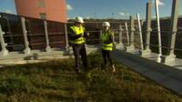 Urban green roof at the University of Manchester's National Graphene Insitute