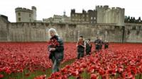 Poppies are collected from the Tower of London