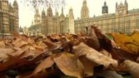 Autumn leaves and Houses of Parliament