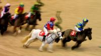 Shetland Pony Grand National racing at Olympia