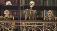 Skeletons at the Grant Museum of Zoology