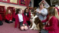 Minnie the dog in school