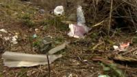 Rubbish along the A50