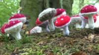 Woollen art in Cumbrian woodland