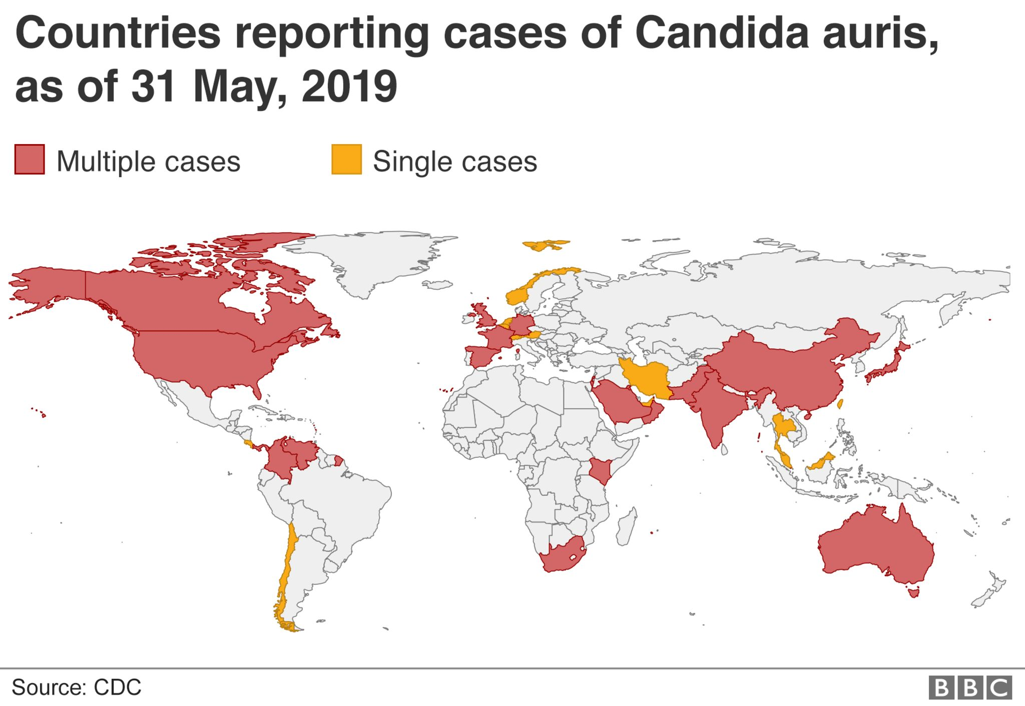 Map of Candida auris cases