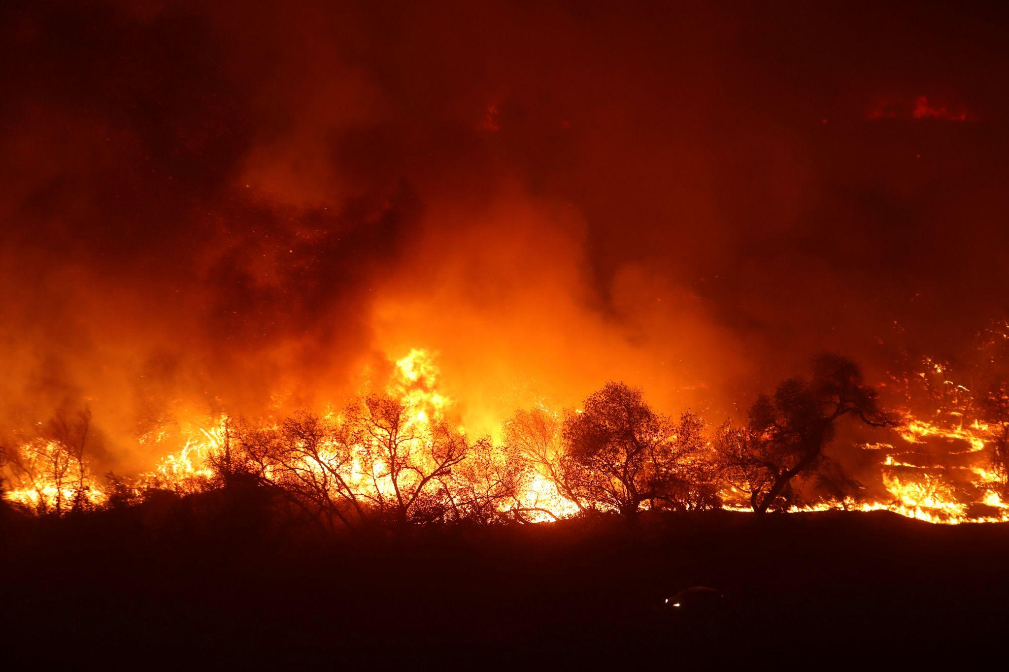 Lilac Fire in California