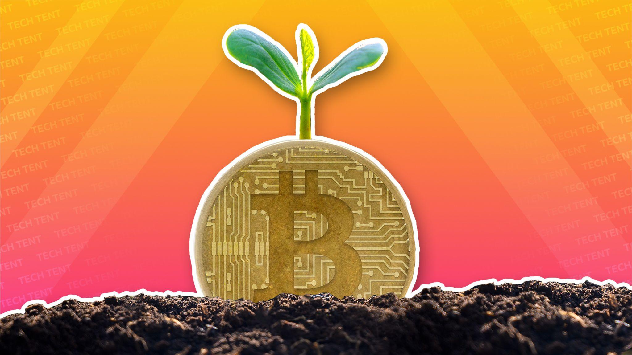 nemokama bitcoin nėra minimalaus išmokėjimo