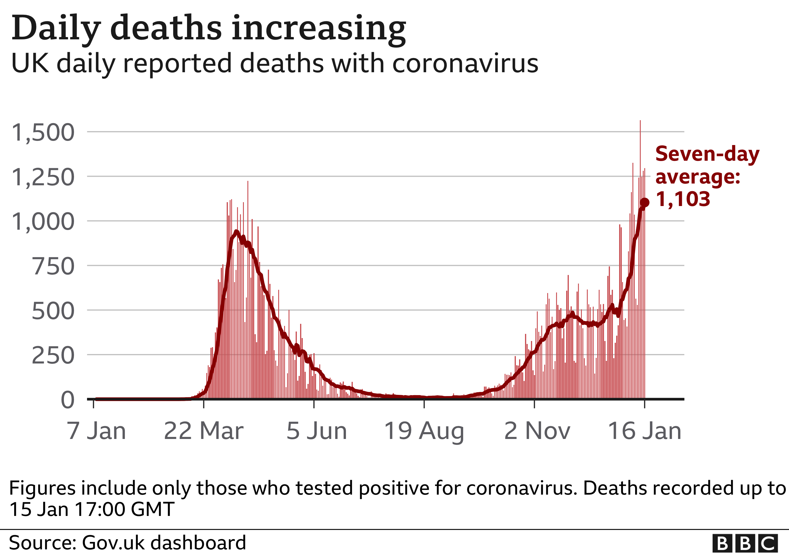 Daily Covid deaths graph
