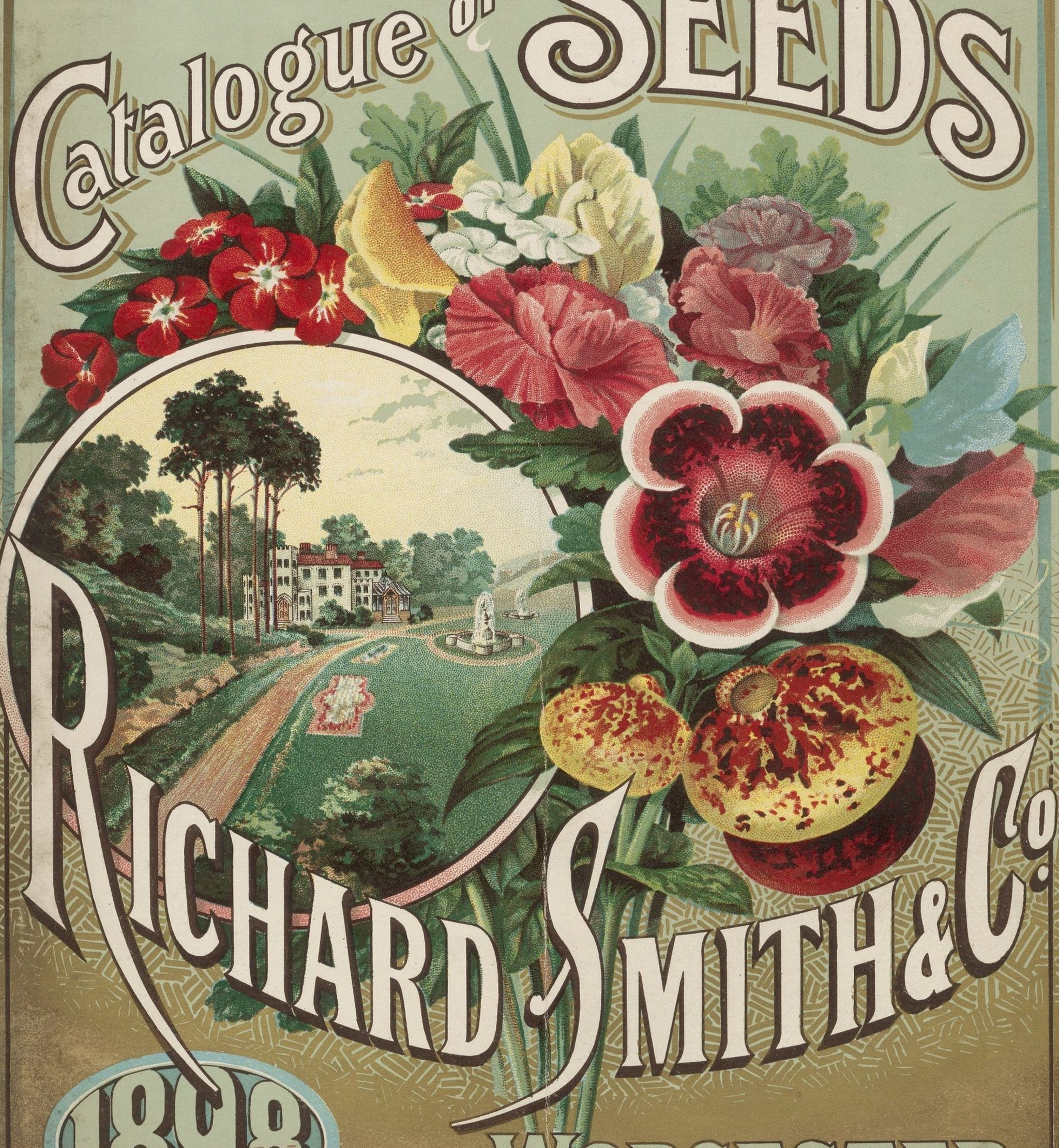 A catalogue of seeds from 1898