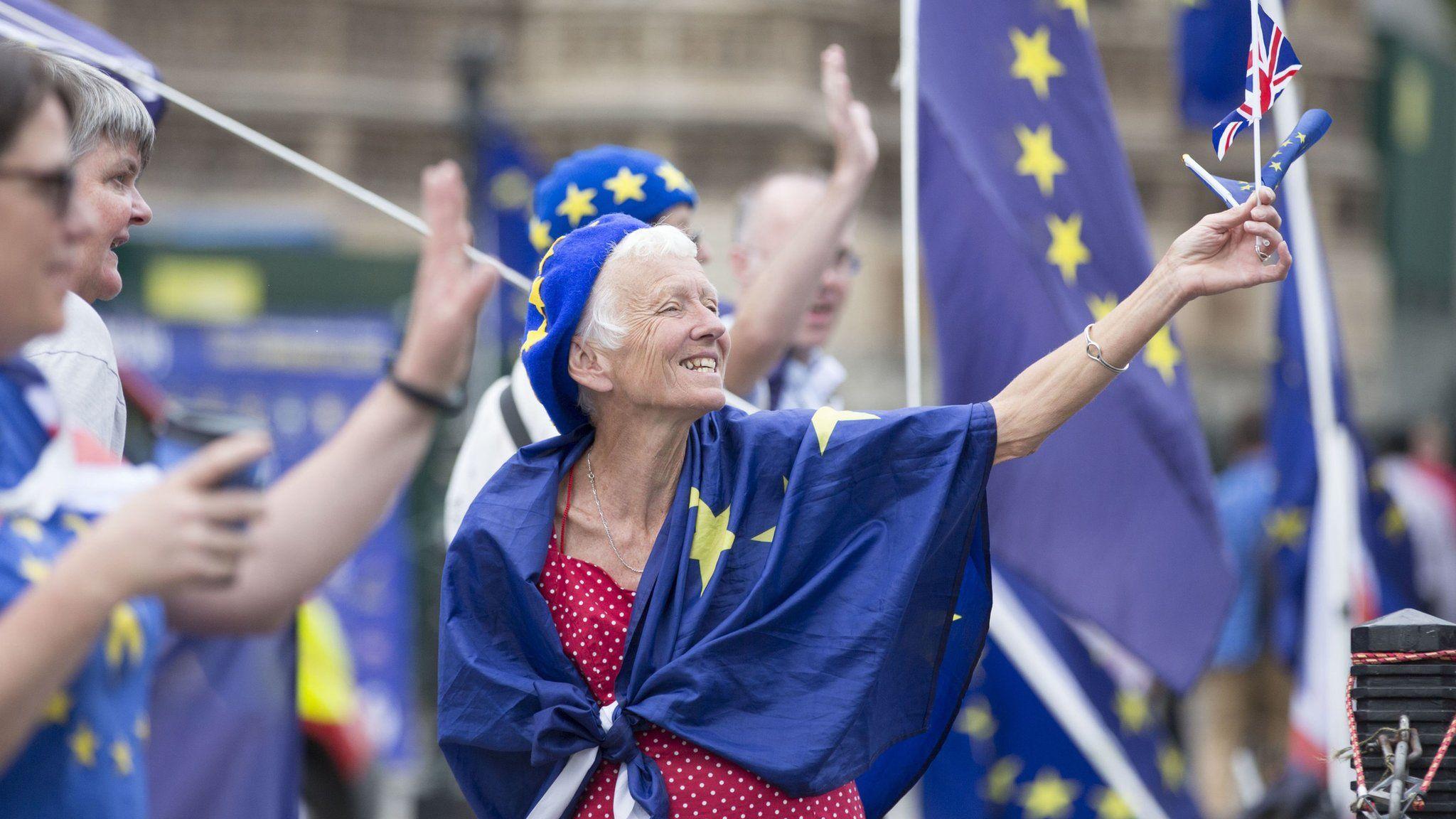 Stop Brexit campaigners