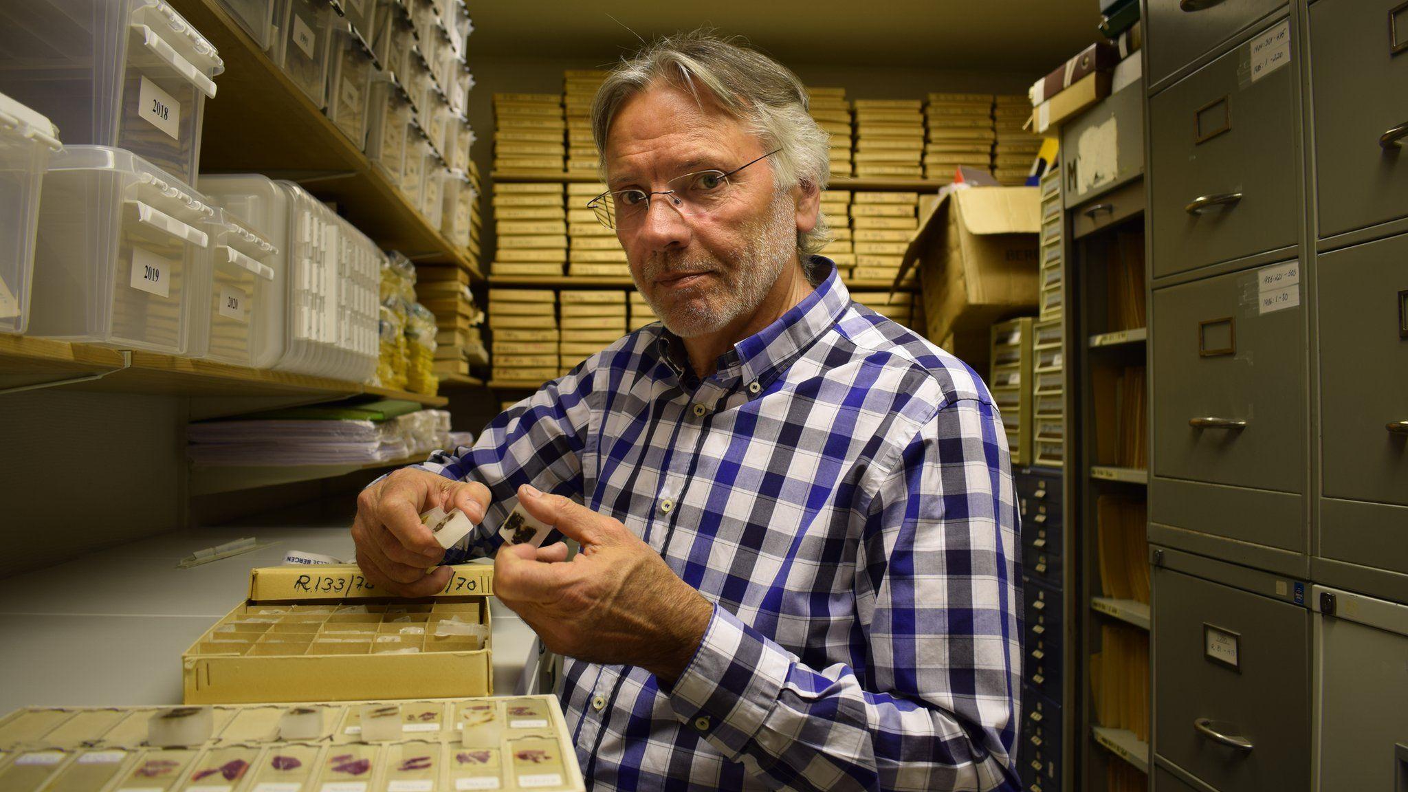 Prof Inge Morild looks through tissue samples belonging to the Isdal Woman