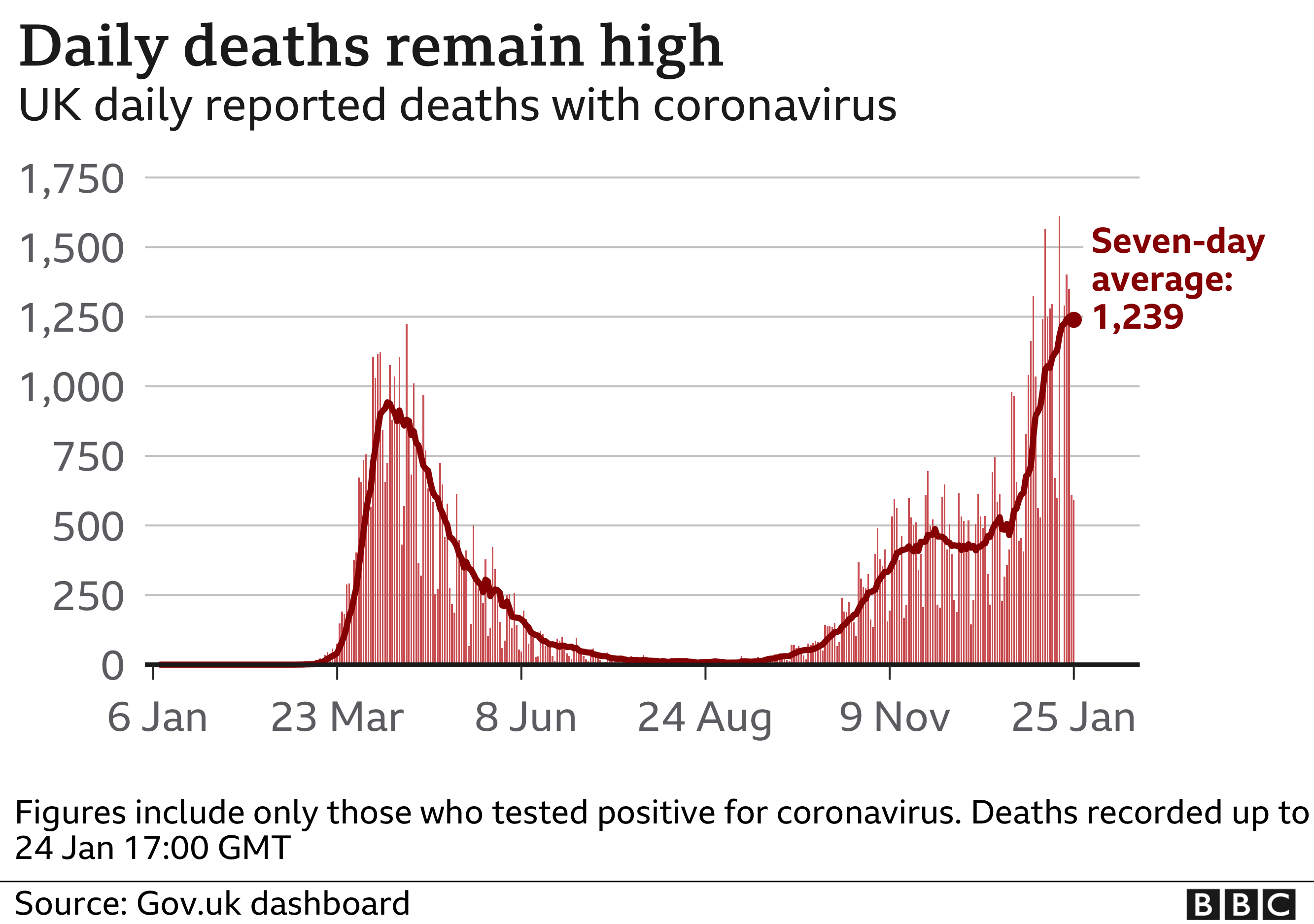 Chart showing daily deaths and seven-day average