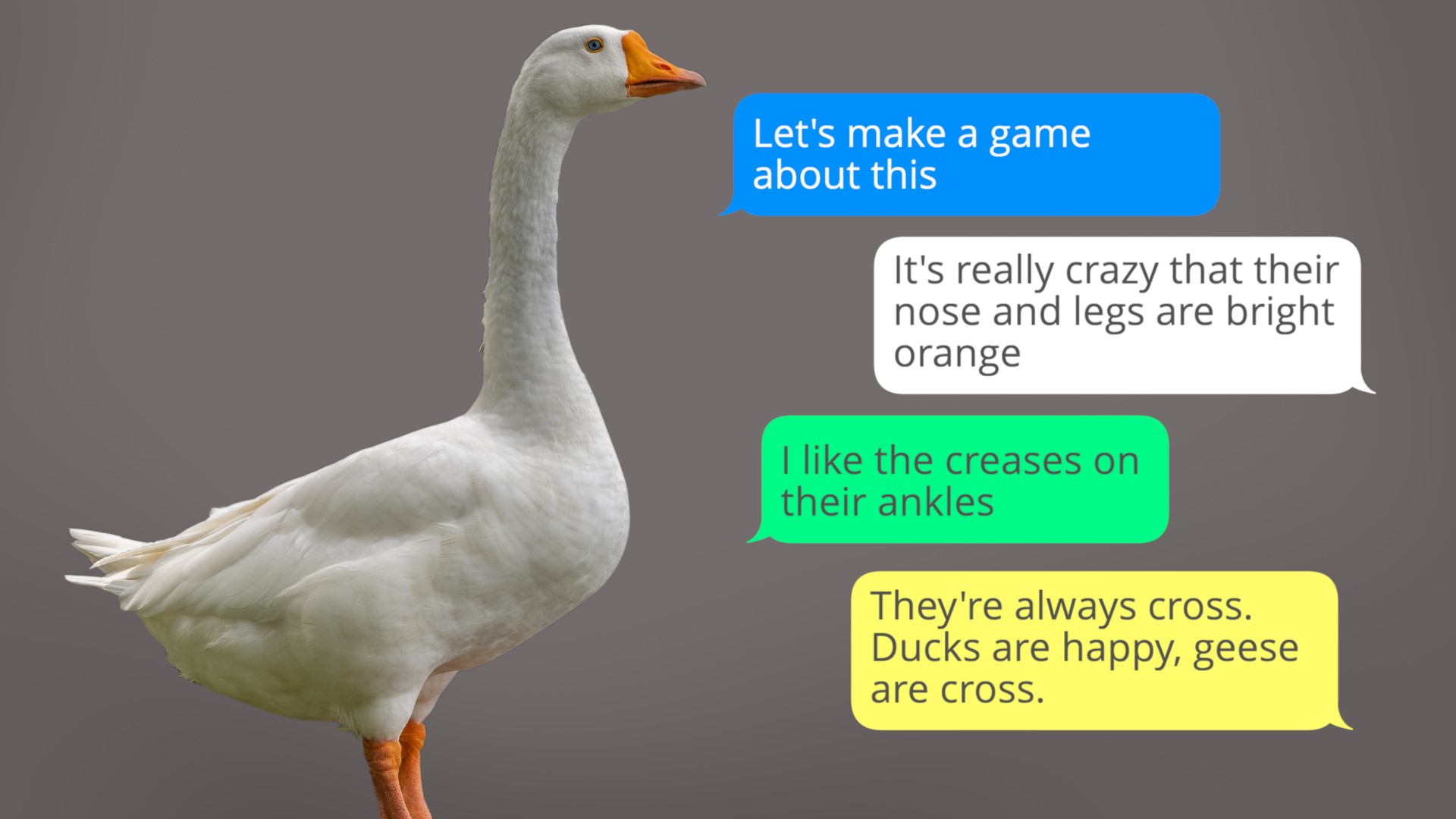 A group chat with a photo of a goose in it