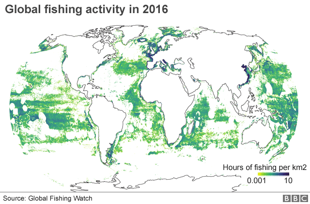 Worlds Fishing Fleets Mapped From Orbit BBC News - Satellite fishing maps