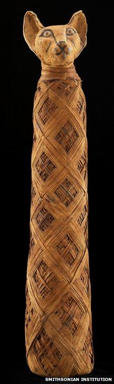 A cat mummy, courtesy of the Smithsonian Institution