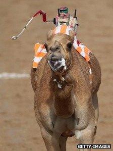 Robot camel jockey