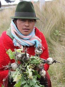 Women holding crops