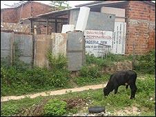 Maranhao state