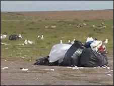 Rubbish in Dale