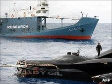 Ady Gil and Shonan Maru 2 after the collision (6 Jan 2010)