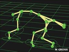 Trace of walking three-legged dog (Martin Gross)