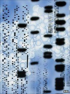 Computer generated image of DNA sequences (Science Photo Library)