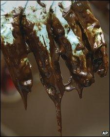 An oil-covered glove worn by a worker in Pass a Loutre, Louisiana