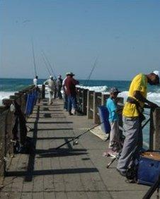 Fishermen on Snake Park pier, Durban beach front