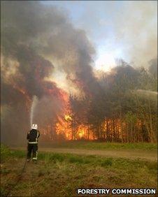 Swinley Forest Fire