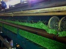 Machine making plastic turf