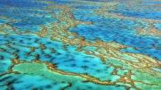 Aerial view of the Great Barrier Reef, Australia on 24 November 2016