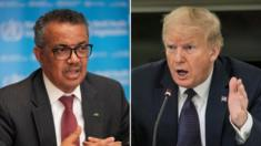 Tedros Adhanom Ghebreyesus and Donald Trump side-by-side in collage