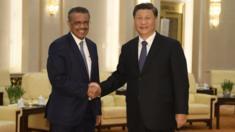 Tổng giám đốc Tổ chức Y tế Thế giới, Tedros Adhanom và Chủ tịch Trung Quốc Tập Cận Bình