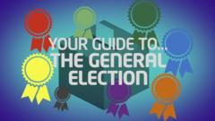 Newsround election graphic