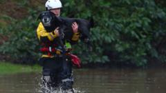 service-person-holds-dog-in-arms-crossing-floods